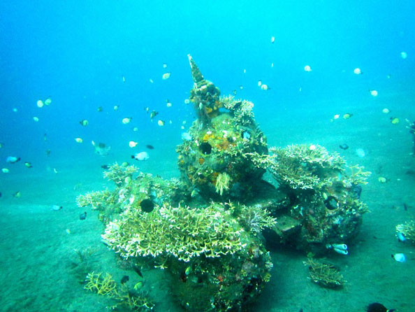 LINI - Artificial Reef Structures