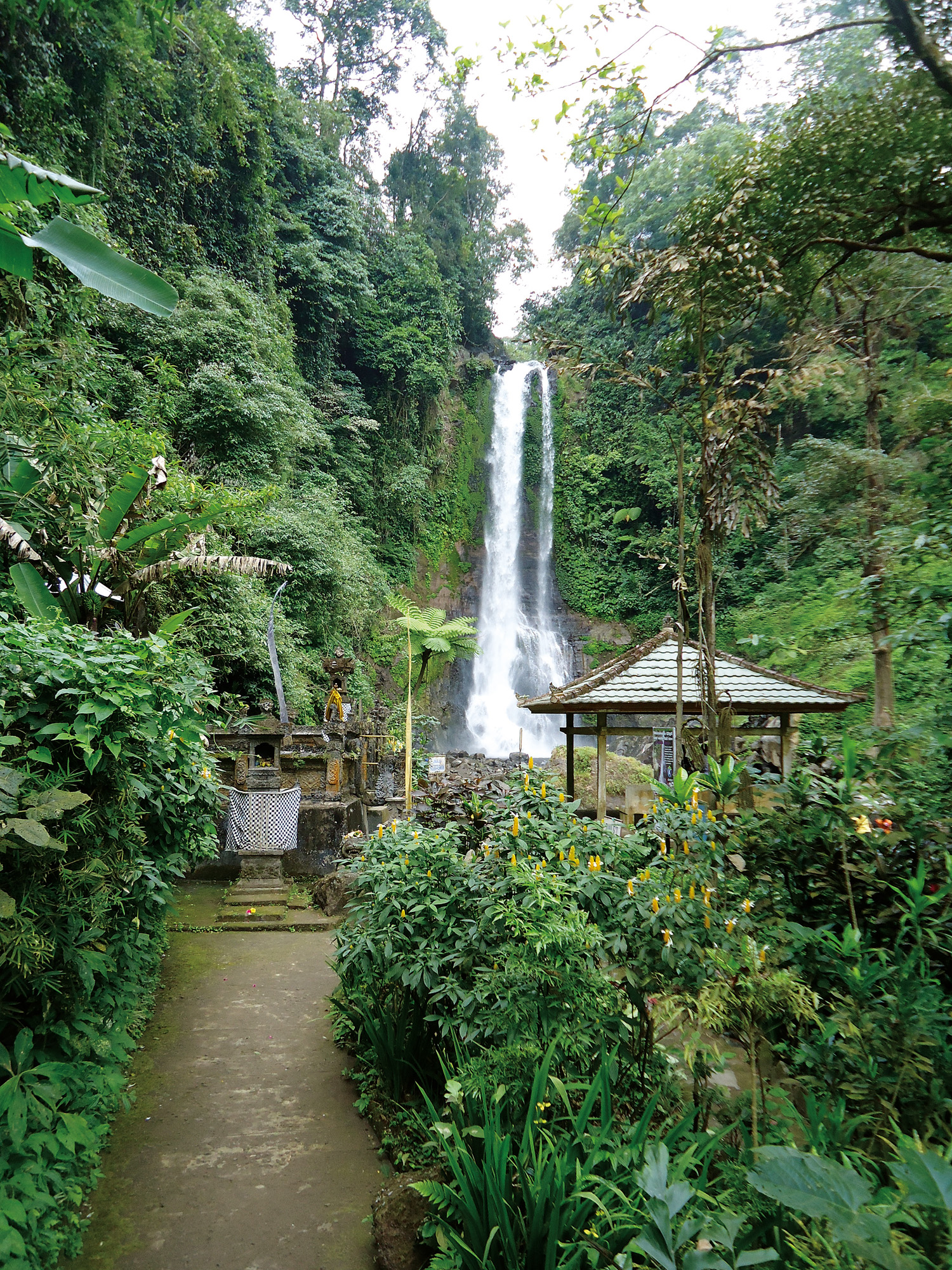 WTG - Gitgit waterfall (3)