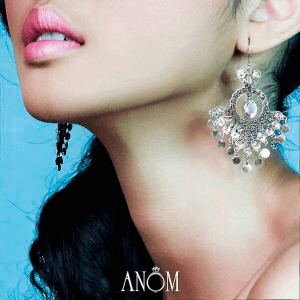 shopping-anom-1
