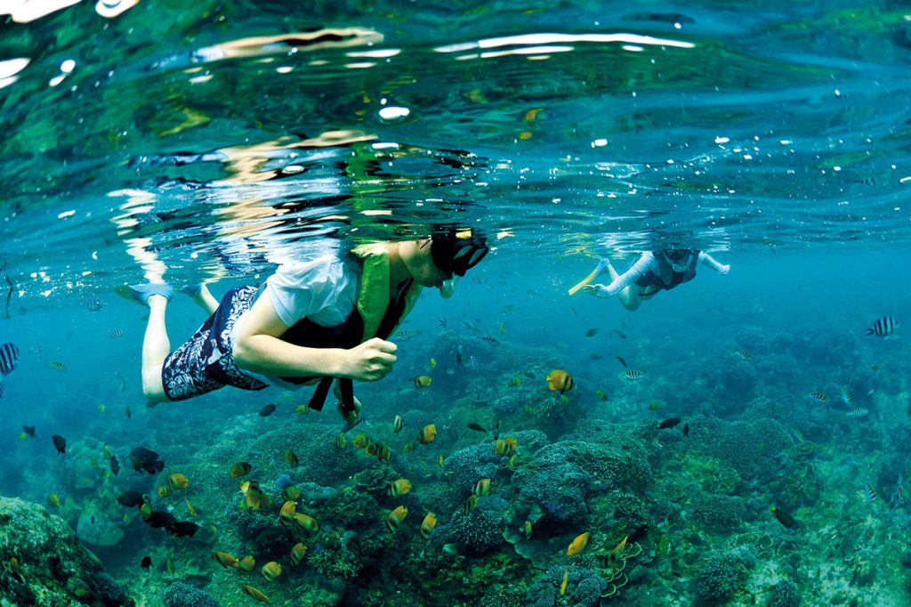 Theme---Exploration-East---WTD---Snorkeling-(2)