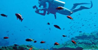 Theme---Exploration-East---WTD---diving-Nusa-Lembongan