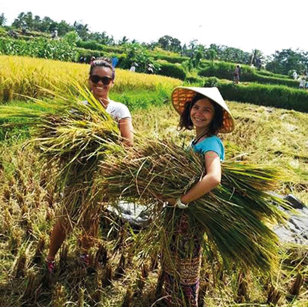 Charity-Profile---Sawah-Bali----change-management--agrotourism2