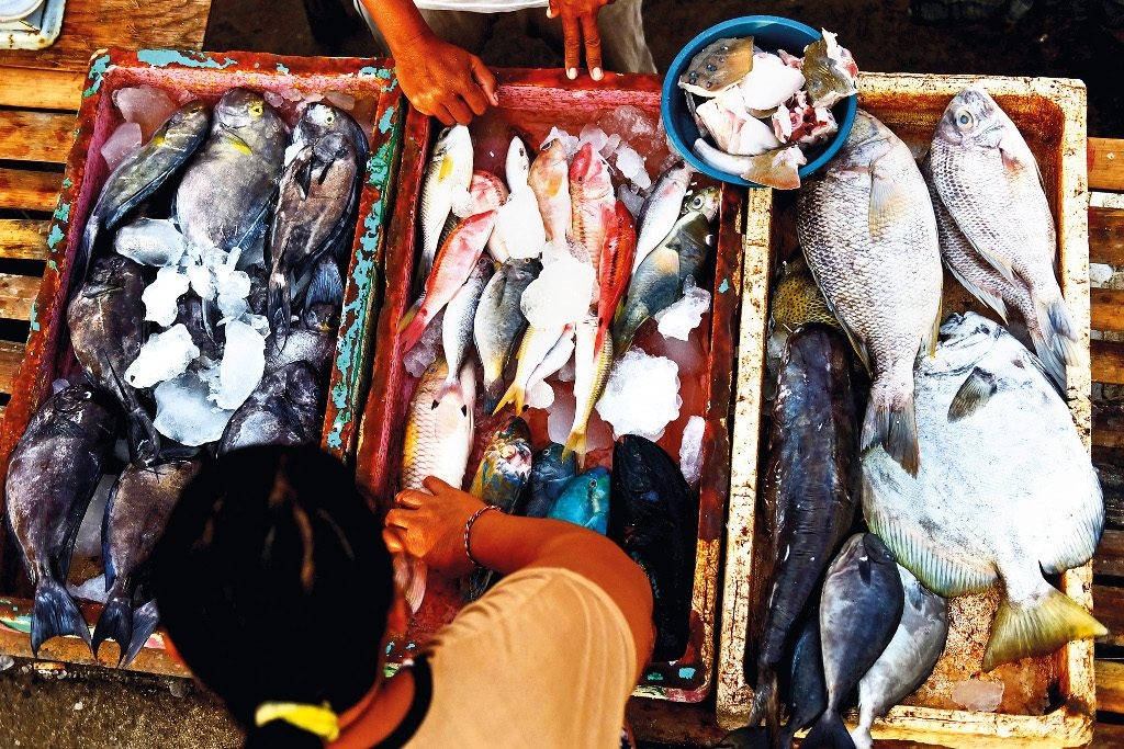 Fish Market Kedonganan_edit