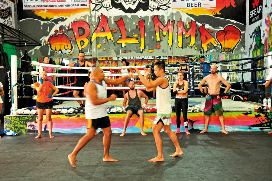 Theme - WTD - Sports Club - Bali MMA (1)
