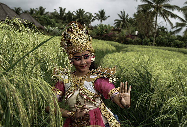 Desa Visesa Bali Balinese Living Arts Performance