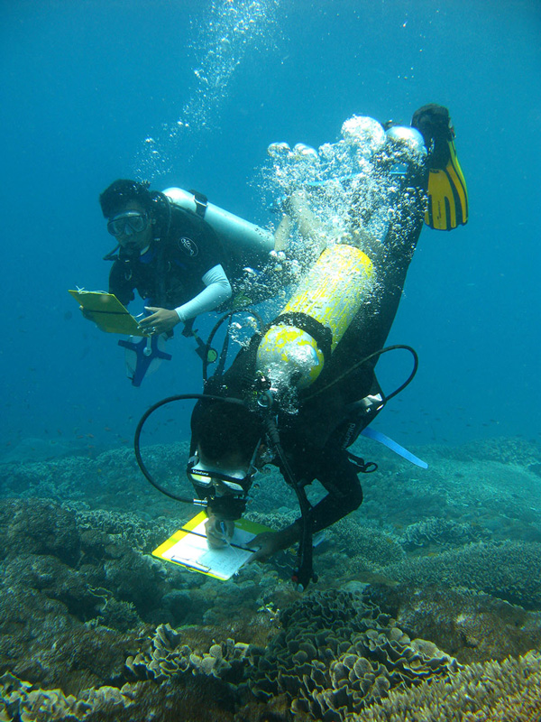 Reef Monitoring in Nusa Penida, Courtesy of Cortal Triangle Center