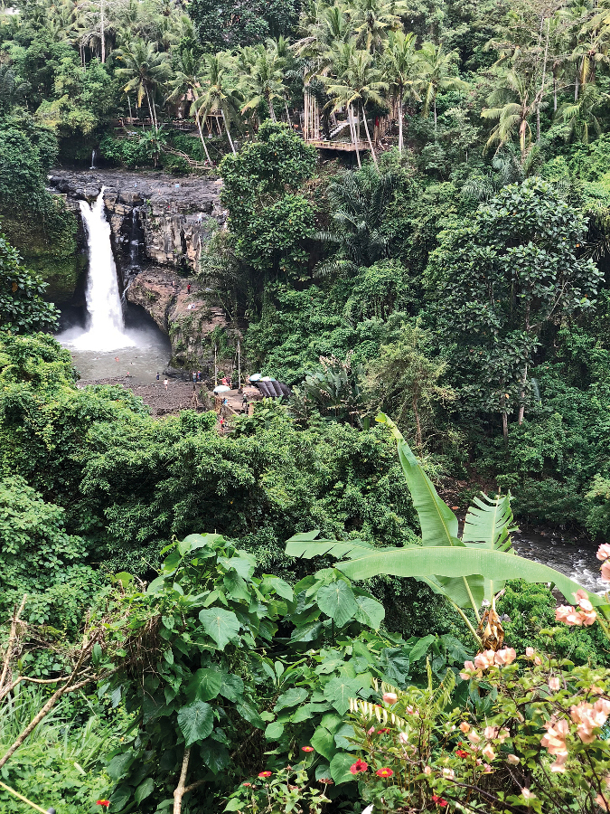 Serene surrounding of Tegenungan Waterfall