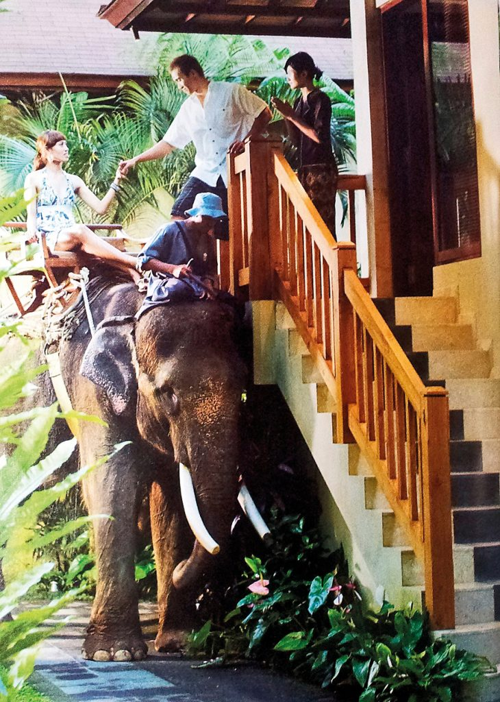 Mason Elephant Lodge