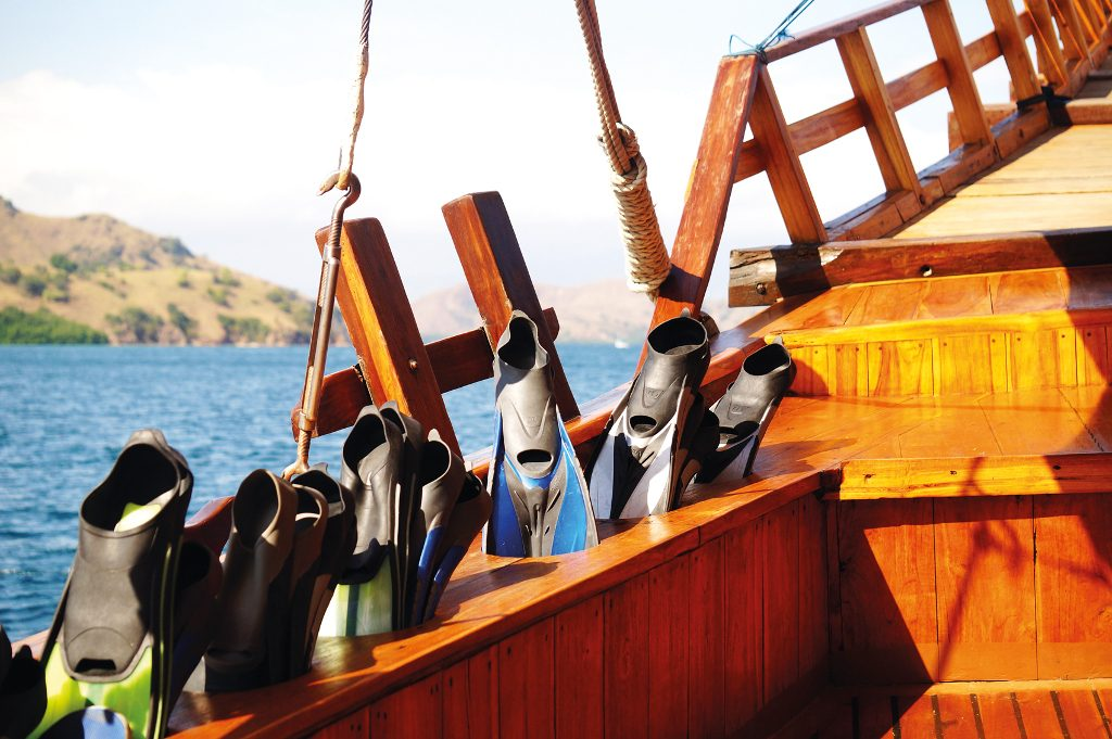 snorkelling and diving gears are provided onboard Felicia