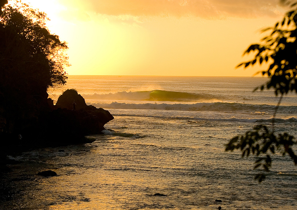 Padang-gold-Photo_-Rip-Curl