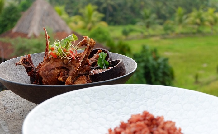 mr wayan ubud balinese food in bali