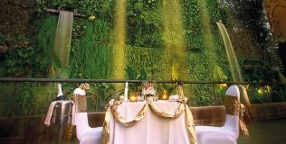 DS---Dining-by-the-Waterfall-thumbnail